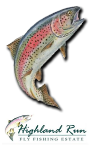 Invest in Trout!